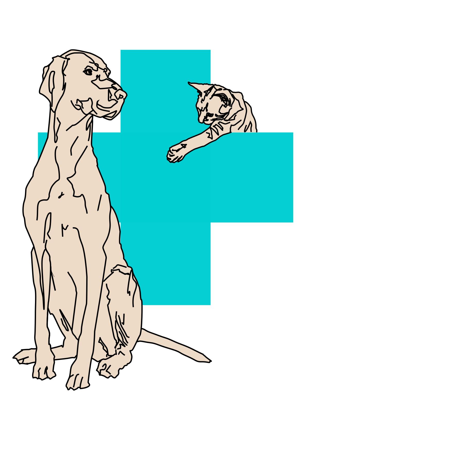 logo mobiele dierenkliniek Blaricum